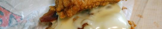KFC's Double Down inside view